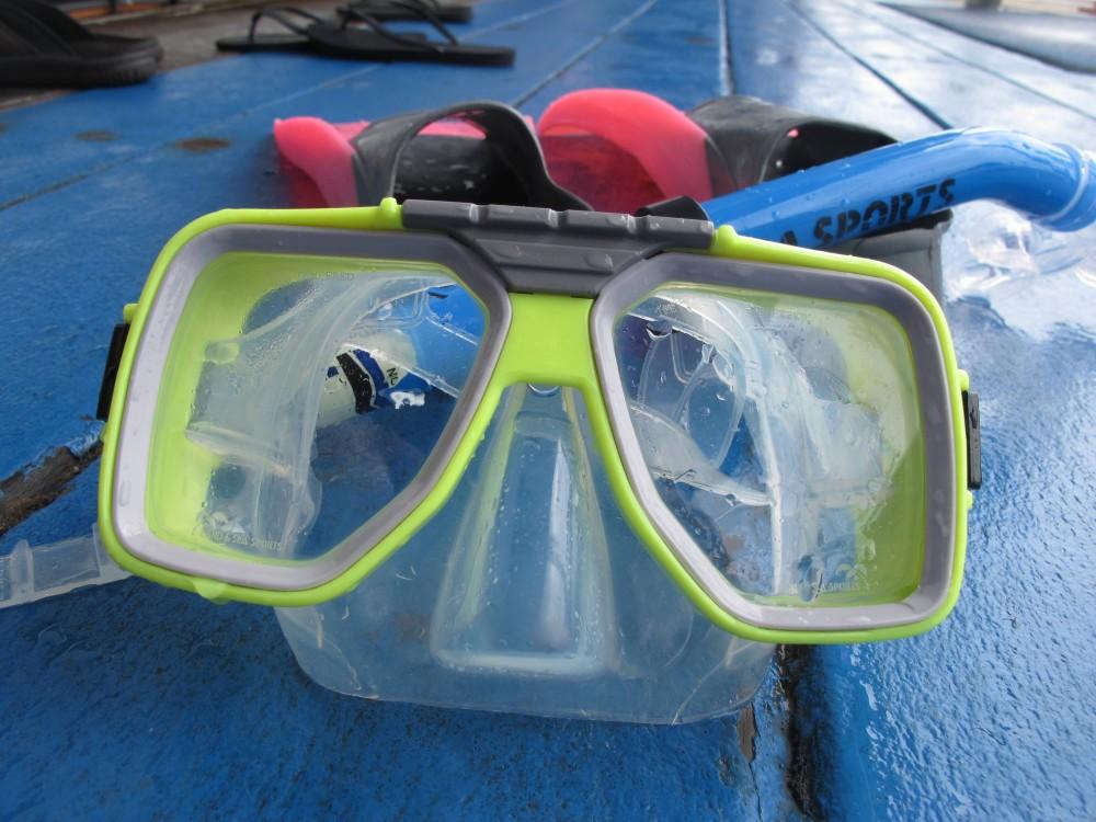Kopf unter Wasser – Schnorcheln am Great Barrier Reef