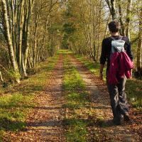 Nordpfade Herbstweg