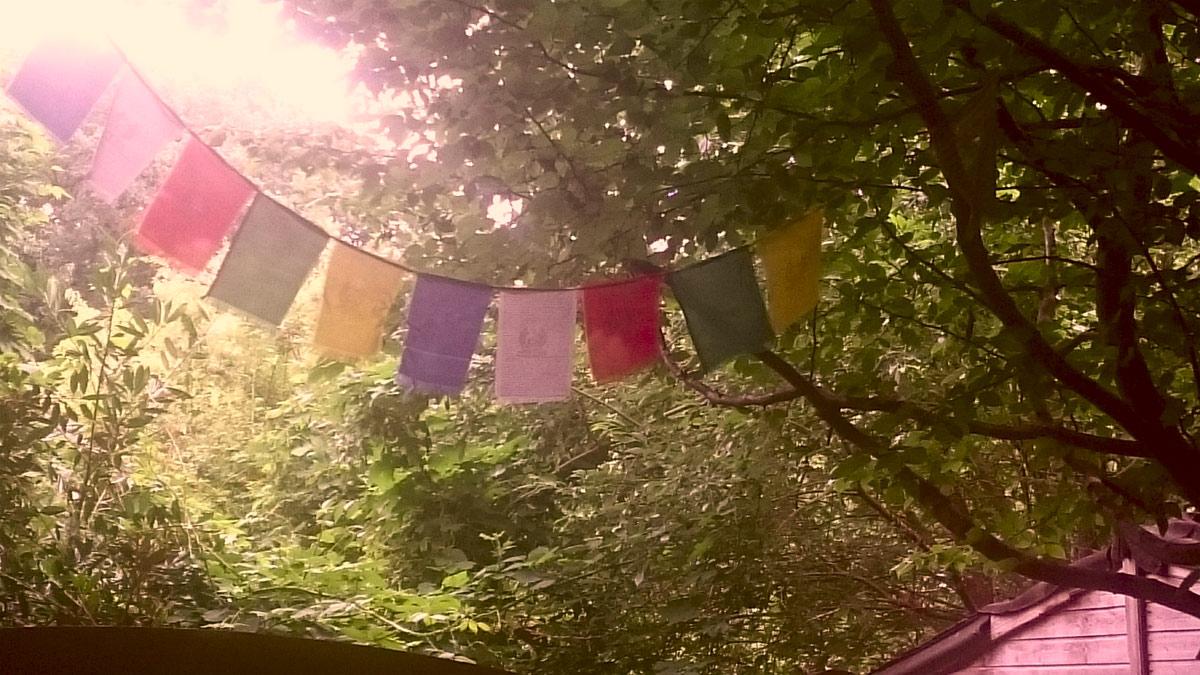 Endlich Sommer! Die Glucke-Kulturtipps für Juni (c) Janina Weinhold